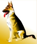 German Shepherd dog, Corel Xara