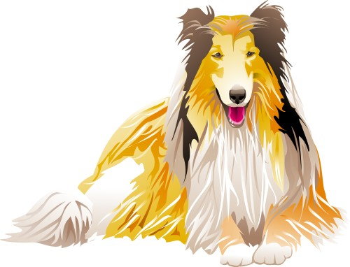 Corel Xara: Collie lying down