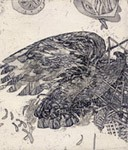 Eagles in a zoo, Etchings, views: 2005