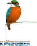 Kingfisher perched on a fishing rod, Corel Xara